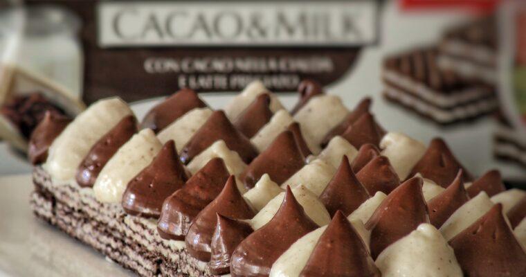 Torta Panna e Cioccolato senza cottura